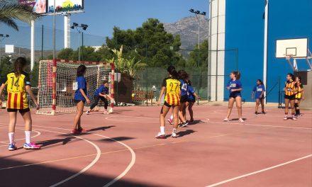 BM. Servigroup Benidorm A 13 – 16 Torrevieja